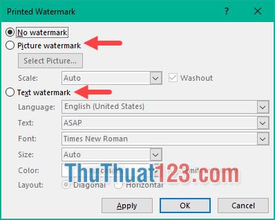 Có 2 lựa chọn tạo watermar là Picture watermark và Text watermark