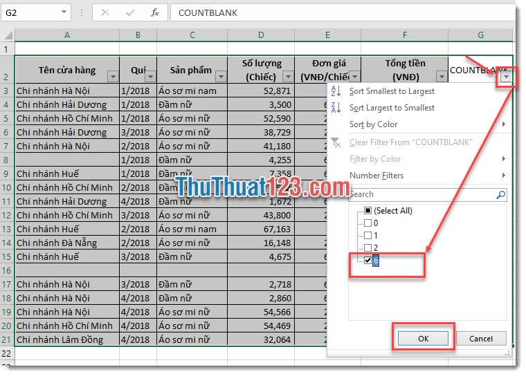 Sử dụng công cụ Filter để lọc ra những dòng có dữ liệu trống