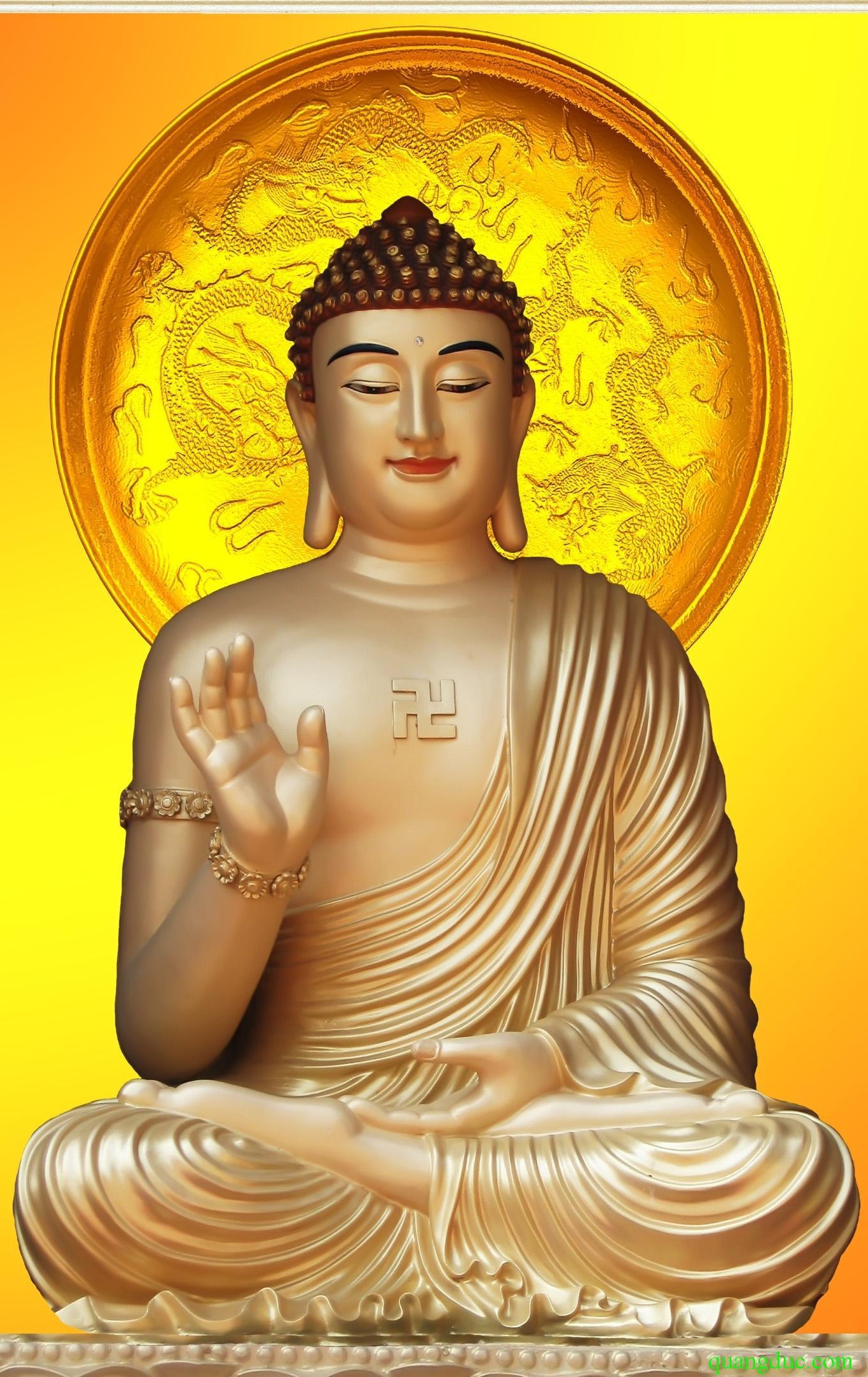 Hình ảnh Đức Phật liếc nhìn chúng sinh