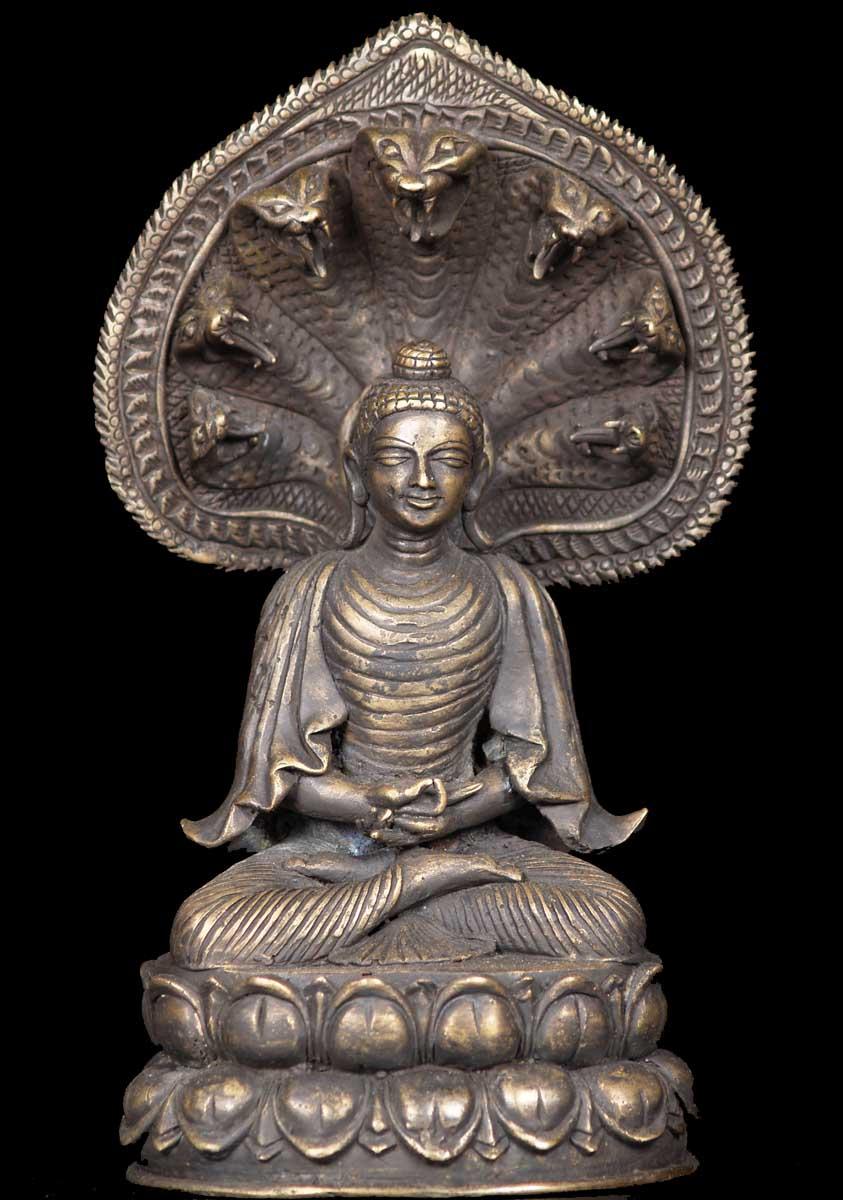 Hình ảnh Phật thiền tọa trên đài làm từ thân của Mục Chân Lân Đà