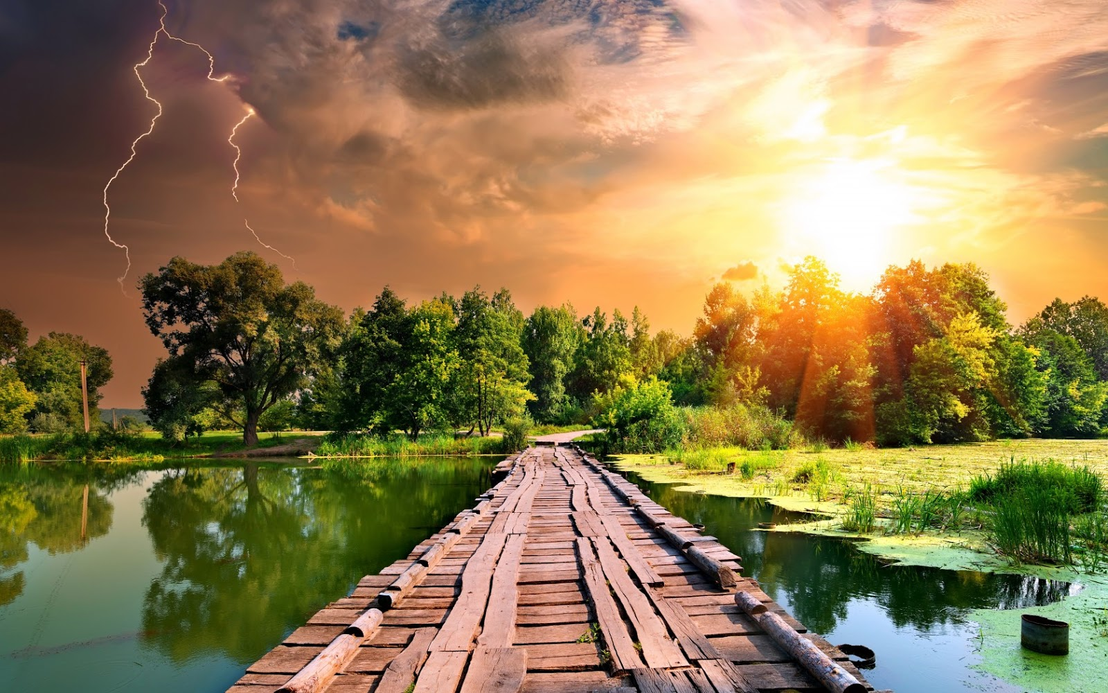 Cảnh đẹp thiên nhiên cây cầu gỗ vươn ra mặt hồ