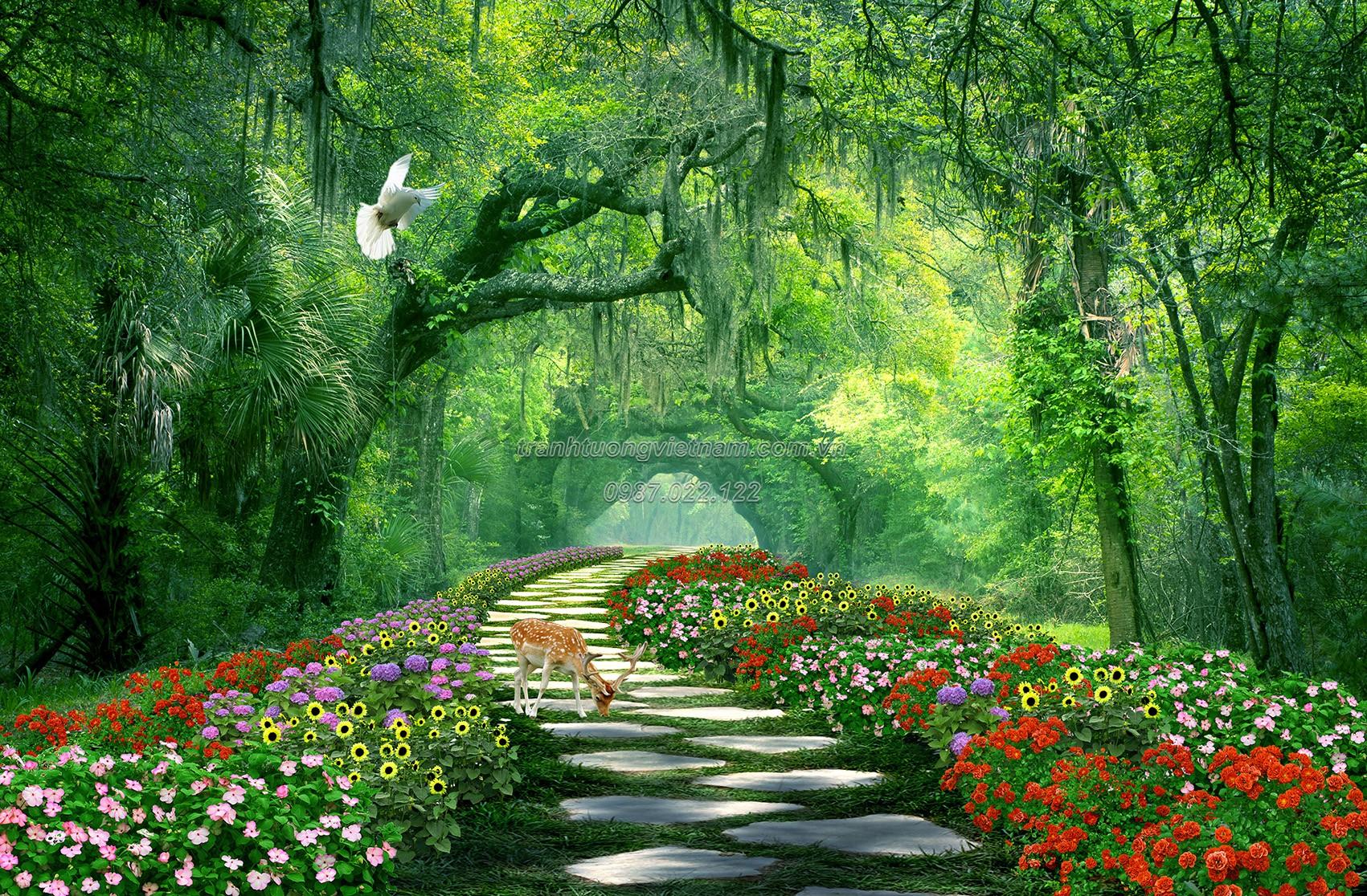Cảnh đẹp thiên nhiên con đường lát đá đi vào rừng thẳm