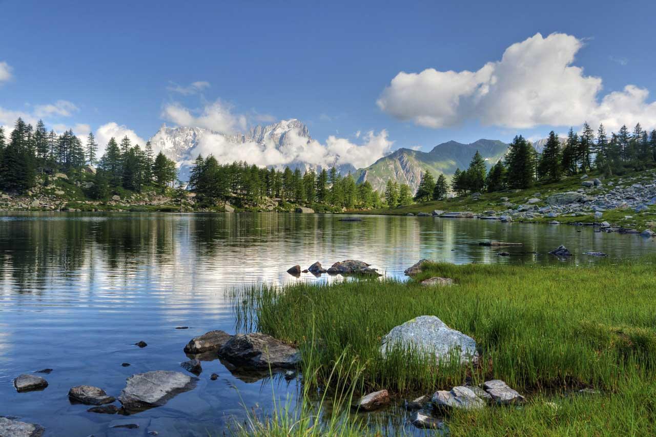 Cảnh đẹp thiên nhiên con suối ở trong rừng