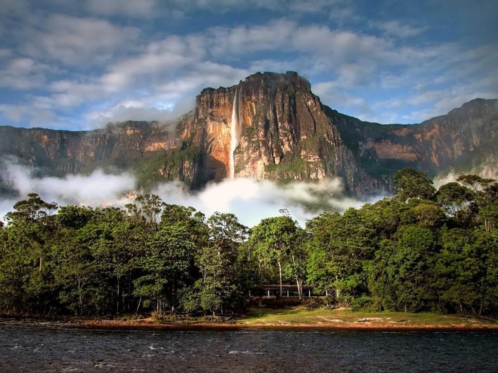 Cảnh đẹp thiên nhiên rừng cây dưới chân núi