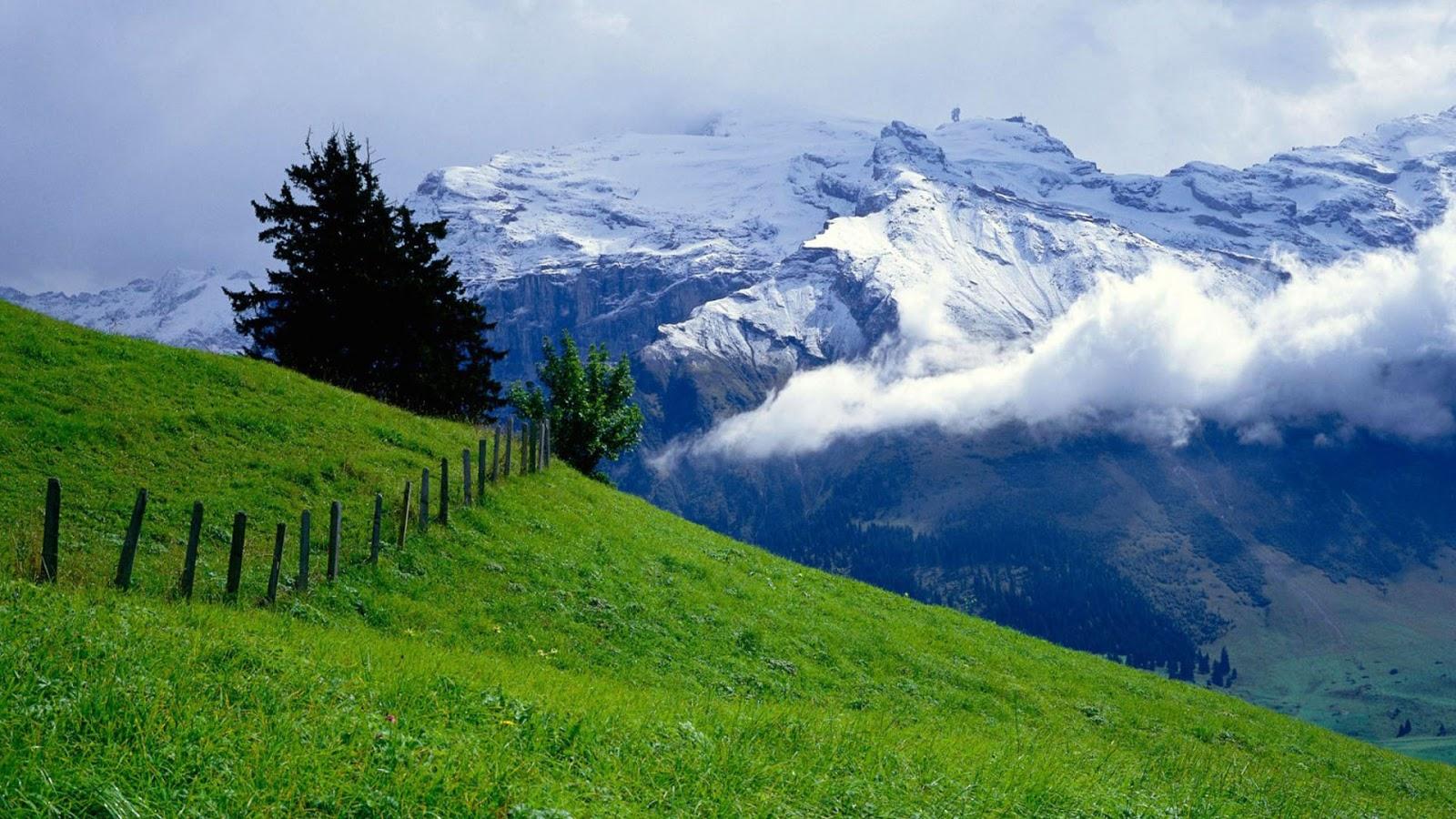 Cảnh đẹp thiên nhiên trên vùng cao