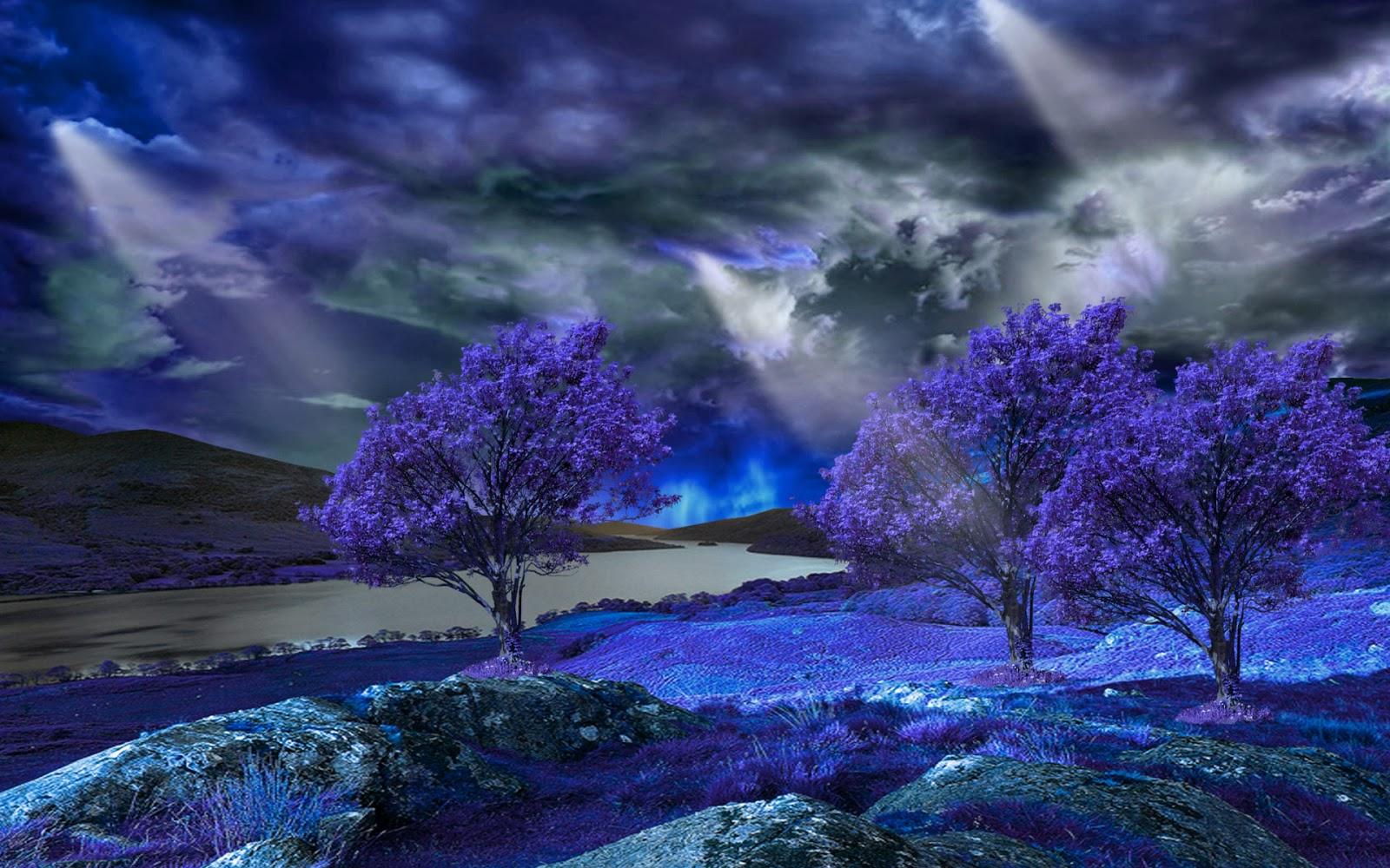 Cảnh thiên nhiên ảo diệu với cây hoa màu tím
