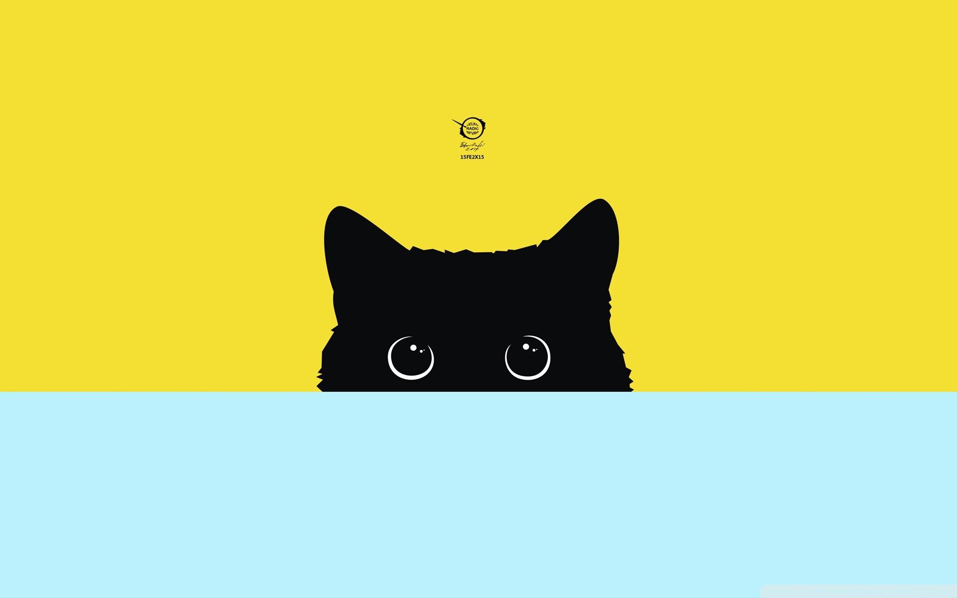 Hình nền dễ thương chú mèo lấp ló