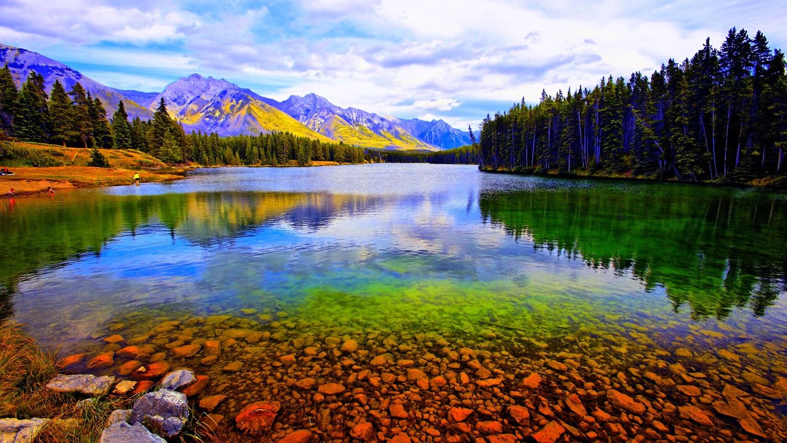 Hồ nước giữa rừng thông rất đẹp