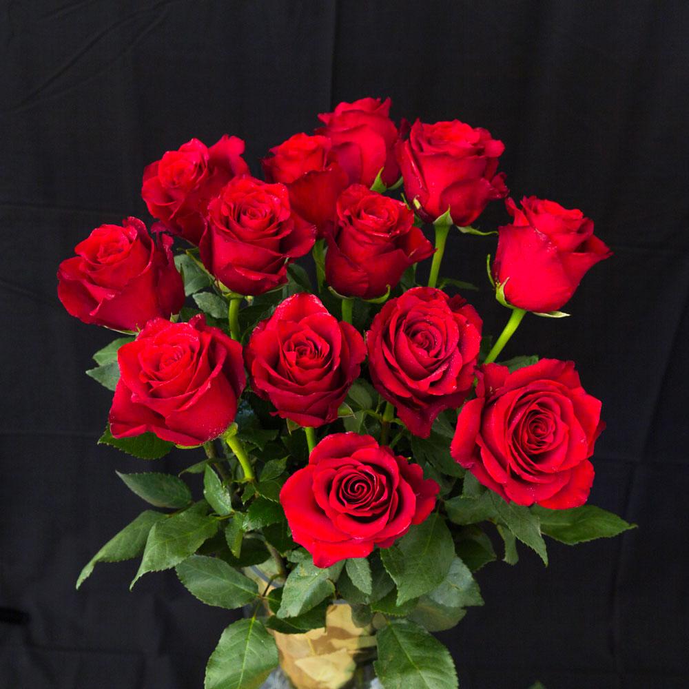 Hình ảnh bó hoa hồng
