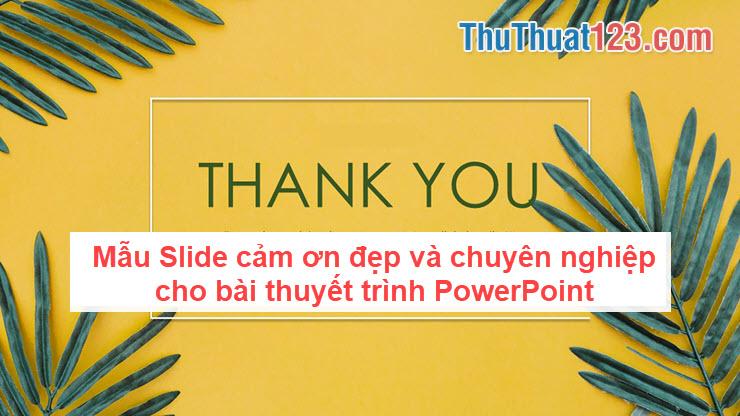Mẫu Slide cảm ơn đẹp và chuyên nghiệp cho bài thuyết trình PowerPoint