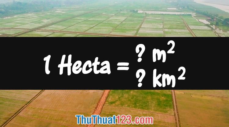 1 Hecta (ha) bằng bao nhiêu m2, km2