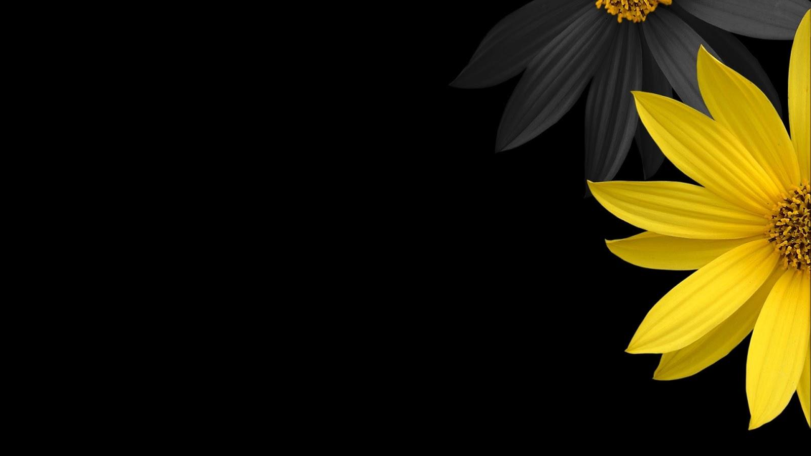 Hình nền hoa đen