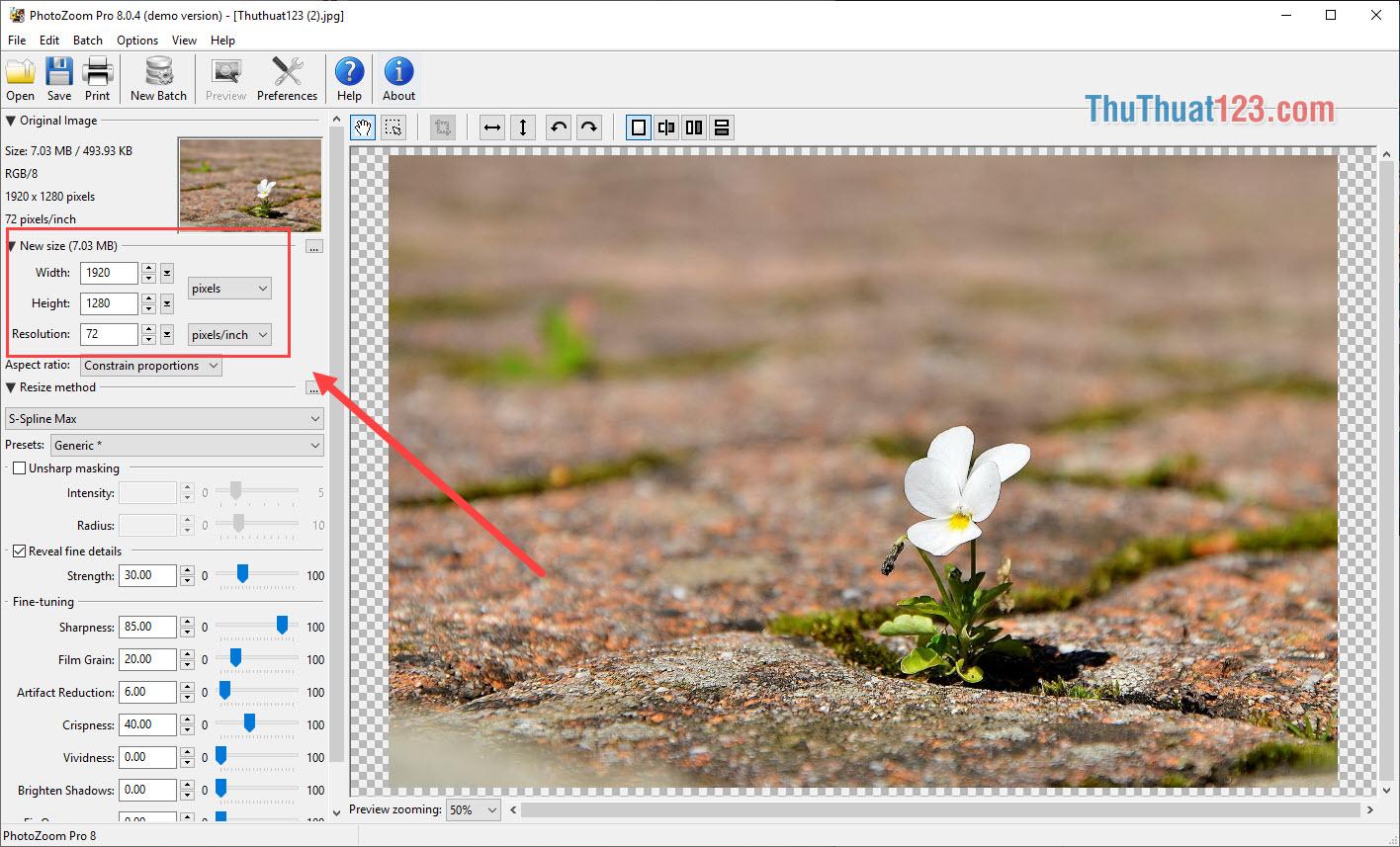 Độ phân giải mặc định của hình ảnh ở phần New Size