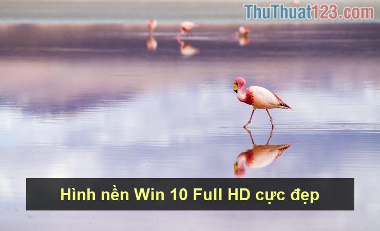 Hình nền Win 10 Full HD cực đẹp