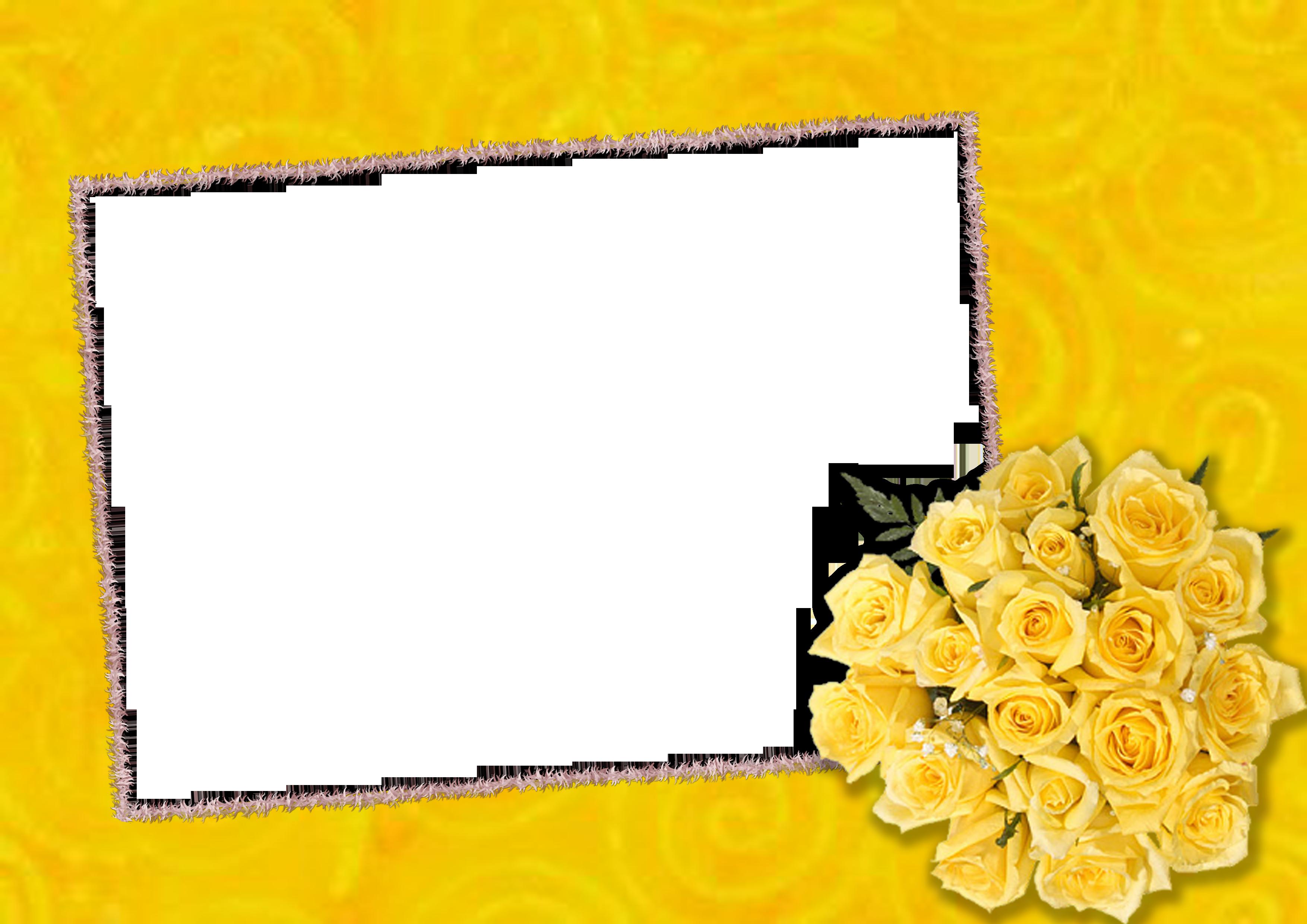 Mẫu khung ảnh hoa Photoshop